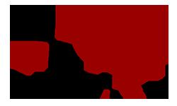 Logo Avanxel